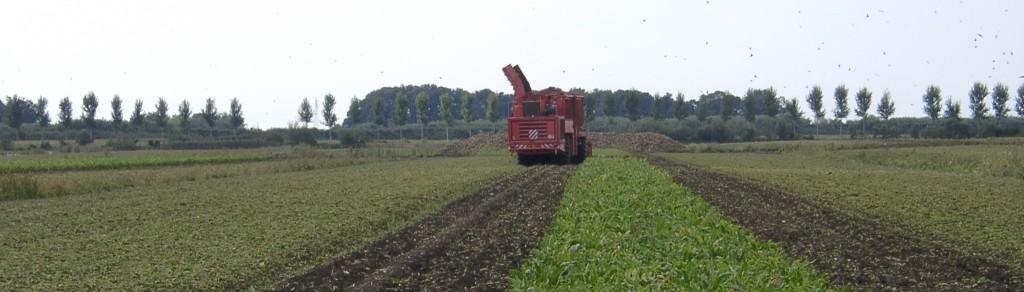 coprob-area-agricola1